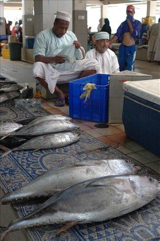 Mercado de pescado (Muscat) / Fish market