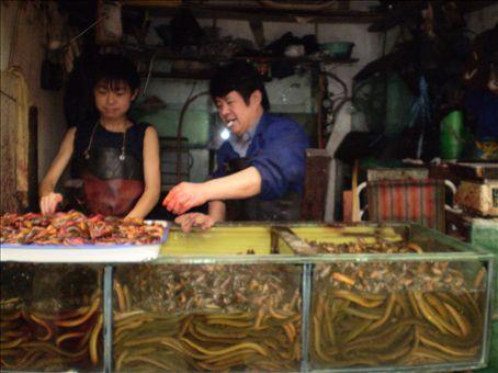 Mercado de peces de Xi'an / Fish market in Xi'an