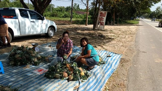 Phrae Pineapples by the Side of the Road