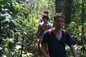 jungle trek!: by gem_sky, Views[124]