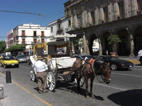 Horse taxis in Guadalajara