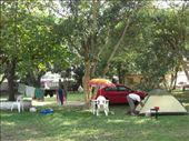 the campsite: by gemma, Views[289]
