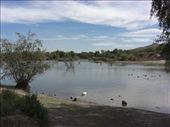 The lake in Tangamanga Park: by gemma, Views[420]