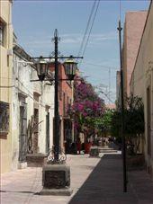 a pretty street: by gemma, Views[183]