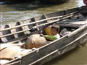 Comme partout en Asie, pas question de prendre une gardienne.: by genebi, Views[124]
