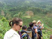 À la queue leu leu, des centaines de touristes descendent dans les villages autour de Sapa...bon ou pas bon le tourisme?: by genebi, Views[181]