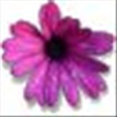 This is the description for the flower photo: by georgina, Views[171]