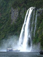Milford Sound: by geri, Views[142]