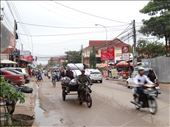 Street life in Siem Reap - lots of nice morning walks here: by gina_holley, Views[426]