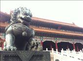 Forbidden City lion, Beijing, China: by globalspirit, Views[33]