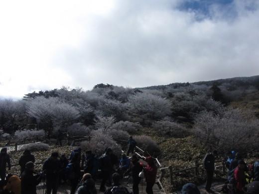 Hallasan mountain (한라산)