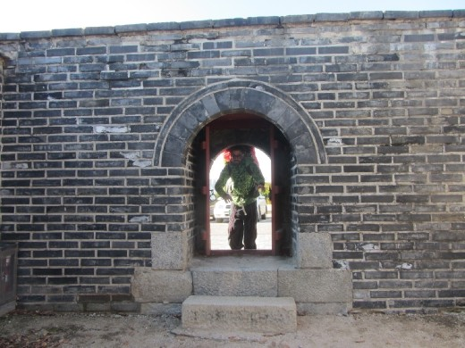 Dario attempts to enter Hwaseong Fortress! 