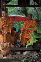 Monks wait near hin lat waterfall, silently and patiently under shelter for transport to take them to Chaweng,koh samui.: by goodtrojan, Views[161]