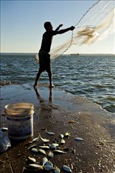 A young fisherman casts his net made of intertwined fishing line and rope.: by grainfedphoto, Views[476]
