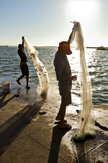 All of the fish caught are sold on site to local restaurants and fishmongers.