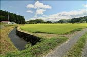 Rice fields, Nishimeya Valley: by graynomadsusa, Views[12]