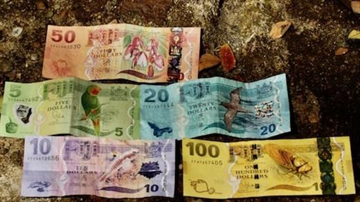 Colorful Fiji money