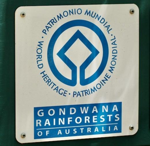 Lamington NP, Queensland