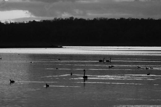 Early morning on Sampsonvale Lake