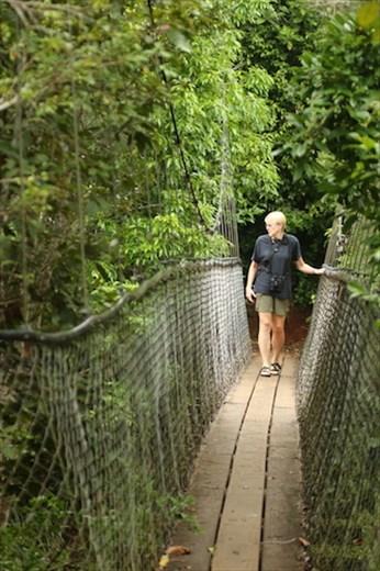 Suspension Bridge, Yungaburra QLD