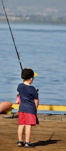 Gone fishin'  Tauranga