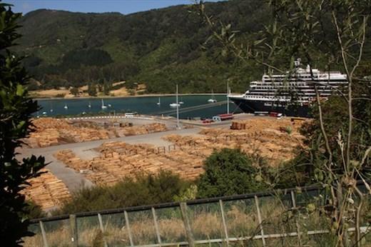 Lumber is a major NZ export, Picton
