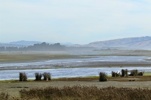 It's out there somewhere, Ashley-Rakahuri Estuary