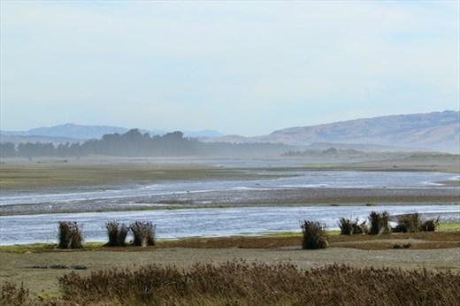 High Tide, Ashley-Rakahuri Estuary
