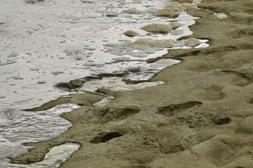 Rising tide, Ashley-Rakahuri Estuary