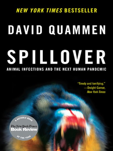 Spillover — the Next Big One