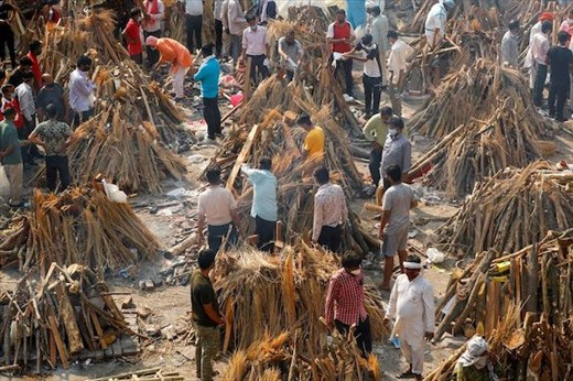 Firewood—Don't Leave Home Without It  (I lied. Photo of India from Internet, not Virginia)