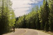 Springtime in the Rockies, Squaw Pass: by graynomadsusa, Views[8]