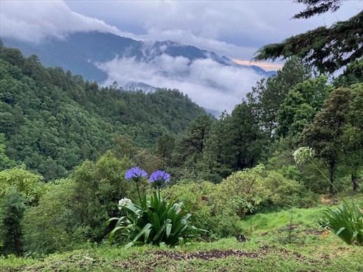 Room with a View, Cabinas Puesto del Sol, San Jose Pacifico