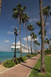 Cruise parking, Port Oranjestad, Aruba: by graynomadsusa, Views[21]