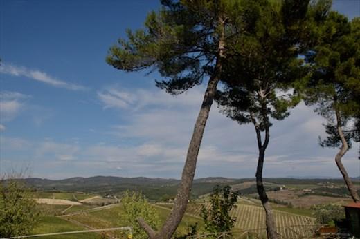 Great Views, Agriturismo Il Poderaccio