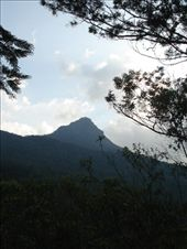 by greenguava, Views[196]