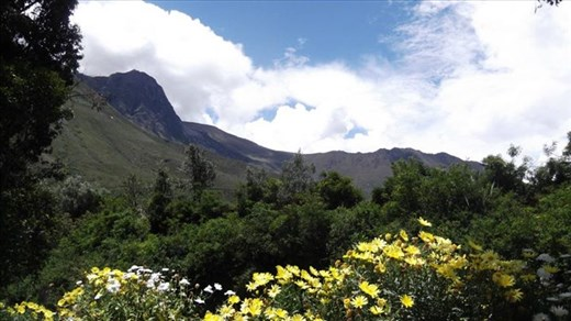Andes in the spring