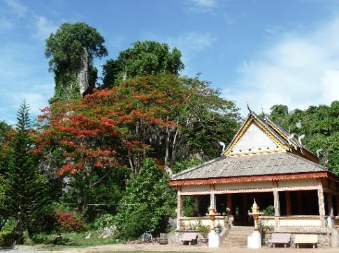 A pagoda surrounded by vibrant trees.
