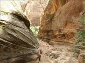 Evidence of erosion at work in Echo Canyon: by gscottie, Views[262]