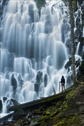A hiker stands in awe at Ramona Falls, Mt. Hood, OR.: by gsuhrie, Views[249]