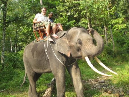 Elephant trekking on Samui