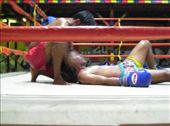 knocked out Thai boxer: by guenomade, Views[211]