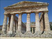 El templo dórico de Segesta, una maravilla perdida en el campo: by gztrips, Views[126]