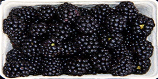 """The rich, dark blackberry is known as the """"cabernet of berries."""""""