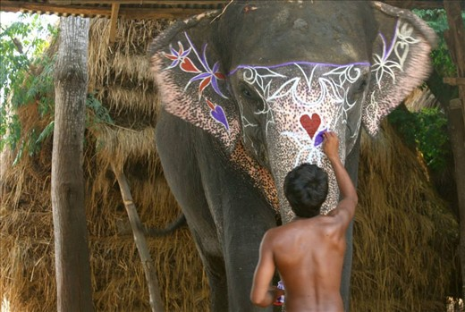 An elephant gets jazzed up in show of devotion to Ganesha, Chitwan National Park