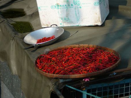 Chillies drying on the roof at Thewet Market