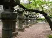 Stone lanterns.  Ueno Park, Tokyo: by hannah-may, Views[199]