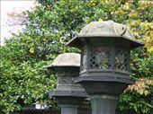 Copper lanterns & citrus.  Ueno Park, Tokyo: by hannah-may, Views[109]