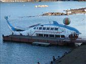 Sad dolphin boat on Lake Kawaguchi.  Fuji Go Ko: by hannah-may, Views[1158]