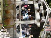 Drinking the healing waters at Kiyomizudera.  Kyoto: by hannah-may, Views[236]